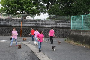 小倉北区お散歩