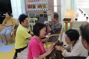 小倉北区にある住宅型有料老人ホームさわやか